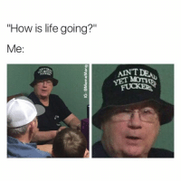 "Funny, Instagram, and Life: ""How is life going?""  Me:  AINT  ANTDE  YET MOTE Follow my Instagram for more funny memes. Instagram - @mememang"