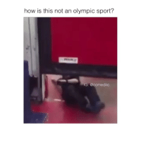 Memes, Twitter, and Videos: how is this not an olympic sport?  IG: @comediic follow @comediic for more videos ✨✨ (credit @spoxyone-Twitter)