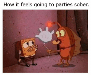 Dank, Memes, and Target: How it feels going to parties sober. I wouldnt recommend it. by Jeffrey_Strange MORE MEMES