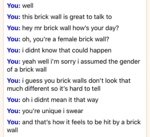 How it feels to be hit by a brick wall feat. lonely me talking to myself on omegle: How it feels to be hit by a brick wall feat. lonely me talking to myself on omegle