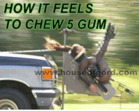 Sorry not sorry: HOW IT FEELS  TO CHEW 5 GUM  www house  fgord com Sorry not sorry