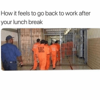Work, Break, and Girl Memes: How it feels to go back to work after  your lunch break Hahahafuckmylifehaha