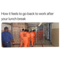 Funny, Memes, and Work: How it feels to go back to work after  your lunch break SarcasmOnly