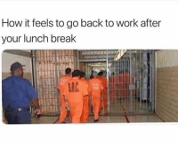 Dank, Work, and Break: How it feels to go back to work after  your lunch break  SIC Back on that grind.