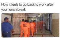 Memes, Work, and Break: How it feels to go back to work after  your lunch break WARNING: DO NOT 🙅🏽‍♂️ follow @MEMEZERINO if you can't take a joke 🤬🔞