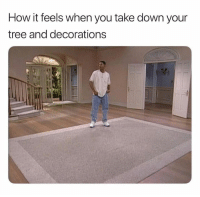 Tree, How, and Down: How it feels when you take down your  tree and decorations