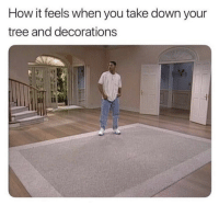 Tree, How, and Down: How it feels when you take down your  tree and decorations  il