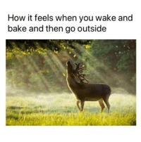 Memes, 🤖, and How: How it feels when you wake and  bake and then go outside