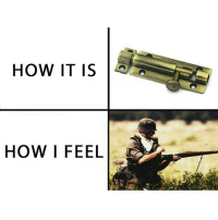 It makes the experience 100x more enjoyable honestly - FOLLOW @the_lone_survivor for more - - PS4 xboxone tlou Thelastofus fallout fallout4 competition competitive falloutmemes battlefield1 battlefield starwars battlefront game csgo counterstrike gaming videogames funny memes videogaming gamingmemes gamingpictures dankmemes recycling csgomemes cod: HOW IT IS  HOW I FEEL It makes the experience 100x more enjoyable honestly - FOLLOW @the_lone_survivor for more - - PS4 xboxone tlou Thelastofus fallout fallout4 competition competitive falloutmemes battlefield1 battlefield starwars battlefront game csgo counterstrike gaming videogames funny memes videogaming gamingmemes gamingpictures dankmemes recycling csgomemes cod
