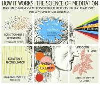 Innerstand2Overstand: HOW IT WORKS: THE SCIENCE OF MEDITATION  MINDFULNESS INVOLVES SIX NEUROPSYCHOLOGICAL PROCESSES THAT LEAD TO A PERSON'S  MEDITATIVE STATE OF SELF-AWARENESS.  INTENTION  EN  TION  MOTIVATION.  (TO ACHIEVE  NON-ATTACHMENT &  MINDFULNESS)  DECENTERING  (LETTING GO OF THE EGO)  PRO-SOCIAL  BEHAVIOR  EXTINCTION &  RECONSOLIDATION  EMOTION  REGULATION  CHANGING BEHAVIORS OR  (A SENSE OF EMPATHY  ATTITUDES)  FOR OTHERS) Innerstand2Overstand