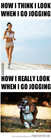 25+ Best Funny Running Quotes Memes | Running Quotes Memes ...