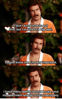 Anchorman: how  Kind of a big deal  dont know  to put  this, but I'm  People known elimvery】important.  bound books  l have many leather- and  my apartment smells of rich mahogany. Anchorman