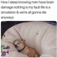 Life, Brain, and Girl: How l sleep knowing men have brain  damage nothing is my fault life is a  simulation & we're all gonna die  anyways Good night everyone! ( follow my girl @memez4dayz )