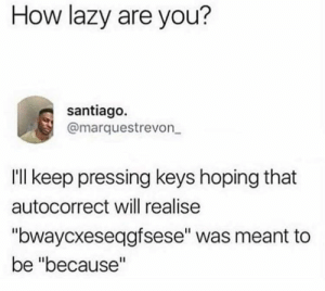 "Autocorrect, Dank, and Lazy: How lazy are you?  santiago.  @marquestrevon  Ill keep pressing keys hoping that  autocorrect will realise  ""bwaycxeseqgfsese"" was meant to  be ""because"" Now this too much."