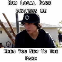Skate, How, and Local: How LOGAL PARK  SKATERS BE  WHEN Yo0 NEW To THE  PARK Tag a skatepark local😂 @jerryfuckingolden @vinniebanh
