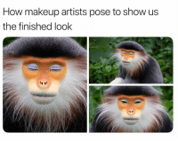 Makeup, Memes, and 🤖: How makeup artists pose to show us  the finished look 😂😂 all over the timeline