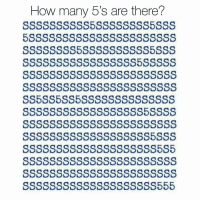 Memes, 🤖, and How: How many 5's are there?  SSSSSSSSSSSSSSSSSSSS5S5  SSSssSSSSSSSsssSSSSS555 Comment below the amount of 5's you were able to count! 🤔🤔🤔
