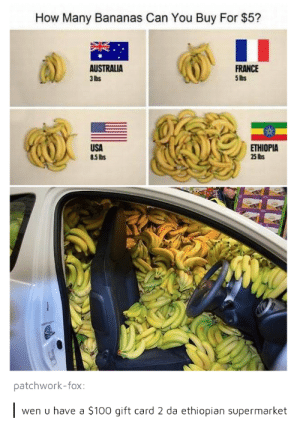 Anaconda, Australia, and France: How Many Bananas Can You Buy For $5?  AUSTRALIA  3 lhs  FRANCE  5 lbs  USA  85 lbs  ETHIOPIA  25 lis  patchwork-fox  wen u have a $100 gift card 2 da ethiopian supermarket That sound is the Yiga Clan buying plane tickets