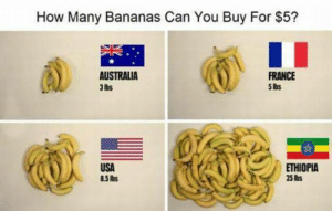 thefuzzydave: I have no idea what to do with this information : How Many Bananas Can You Buy For $5?  AUSTRALIA  3 lbs  FRANCE  5 lbs  USA  85Ibs  ETHIOPIA  25 lis thefuzzydave: I have no idea what to do with this information