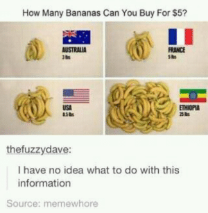 Decade Rewind [2012]: How Many Bananas Can You Buy For $5?  FRANCE  She  AUSTRALIA  USA  ETHIOPIA  thefuzzydave:  I have no idea what to do with this  information  Source: memewhore Decade Rewind [2012]
