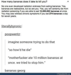 "10 million bananas: How many bananas does it take to kill you?  No one ever developed radiation sickness from eating bananas. Yes,  bananas are radioactive, but so are you. Yes, you will certainly die from  radiation poisoning if you are able to eat 10,000,000 bananas at once.  You may also witness chronic symptoms if you eat 274 bananas a day  for seven years.  literallybyronic:  poopwentz:  imagine someone trying to do that  ""so how'd he die""  ""motherfucker ate 10 million bananas at  once. we tried to stop him.""  bananas georg 10 million bananas"