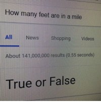 Feet In A Mile: How many feet are in a mile  All  News Shopping  Videos  bout 141,000,000 results (0.55 seconds)  True or False