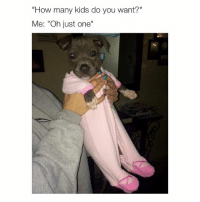 "Cute, Kids, and Girl Memes: ""How many kids do you want?""  Me: ""Oh just one""  Dream cute"