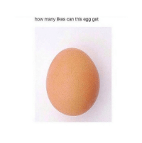 Tag an egg lover 😂👏: how many likes can this egg get Tag an egg lover 😂👏