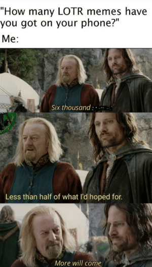 """What it got: """"How many LOTR memes have  you got on your phone?""""  Me:  Six thousand : ..  Less than half of what l'd hoped for.  More will come What it got"""