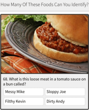 Target, Tumblr, and Dirty: How Many Of These Foods Can You Identify?  68. What is this loose meat in a tomato sauce on  a bun called?  Messy Mike  Filthy Kevin  Sloppy Joe  Dirty Andy delithot:me n the boys