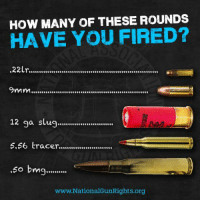 Tell us in the comments! Happy weekend everyone.: HOW MANY OF THESE ROUNDS  HAVE YOU FIRED?  .22Lr...............................................................  12 ga slug...........................  5.66 tracer..........................  .60 bmg..........  www. National GunRights org Tell us in the comments! Happy weekend everyone.