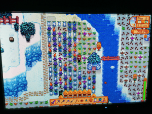 How many of you sleep through winter to get to spring quicker? I never do. I have my greenhouse, my slimes, my winter forageables and my Elliot to keep me company :): How many of you sleep through winter to get to spring quicker? I never do. I have my greenhouse, my slimes, my winter forageables and my Elliot to keep me company :)