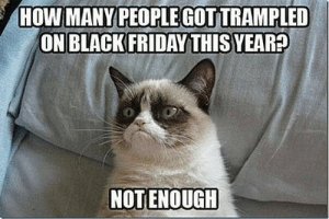 Boss Cat Meme Inspirational 20 Funny Black Friday Memes that Will ...: HOW MANY PEOPLEGOTTRAMPLED  ON BLACKFRIDAY THIS YEAR  0  NOTENOUGH Boss Cat Meme Inspirational 20 Funny Black Friday Memes that Will ...