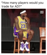 "Los Angeles Lakers, How, and A Team: ""How many players would you  trade for AD?""  B R  AKE  23 Lakers won't have a team left 😂"