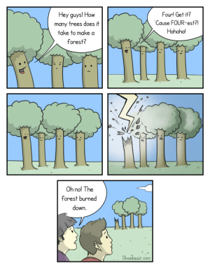 How many trees does it take to make a forest?: How many trees does it take to make a forest?