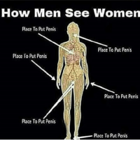 Penis: How Men See Women  Place To Prt Penis  Place To Put Penis  Place To Put Penis  Place To Put Penis  Place To Put Penis  Place To Put Penis