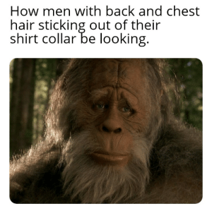 Weed whack that crap already: How men with back and chest  hair sticking out of their  shirt collar be looking. Weed whack that crap already