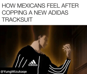Adidas, Anime, and Beautiful: HOW MEXICANS FEEL AFTER  COPPING A NEW ADIDAS  TRACKSUIT  adidas  @YungMizukaqe I swear these Mexicans be having an adidas tracksuit in every color (Don't mind the beautiful editing 🤡)