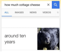 25 best ironic memes rh me me how much is cottage cheese at aldis how much is cottage cheese at aldis