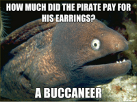 "Meme, Target, and Tumblr: HOW MUCH DID THE PIRATE PAY FOR  HIS EARRINGS?  A BUCCANEER <p><a class=""tumblr_blog"" href=""http://tumblr.tastefullyoffensive.com/post/47134360484/via"" target=""_blank"">tastefullyoffensive</a>:</p> <blockquote> <p>[<a href=""http://www.quickmeme.com/meme/3tov7x/"" target=""_blank"">via</a>]</p> </blockquote>"