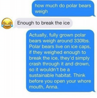 how much does a polar bear weigh: how much do polar bears  weigh  Enough to break the ice  Actually, fully grown polar  bears weigh around 330lbs.  Polar bears live on ice caps,  if they weighed enough to  break the ice, they'd simply  crash through it and drown,  so it wouldn't be a  sustainable habitat. Think  before you open your whore  mouth, Anna.