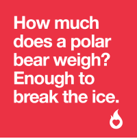 Nice to meet you 😉 #hotornot: How much  does a polar  bear weigh?  Enough to  break the ice. Nice to meet you 😉 #hotornot