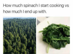 Every single time: How much spinach l start cooking vs  how much lend up with. Every single time