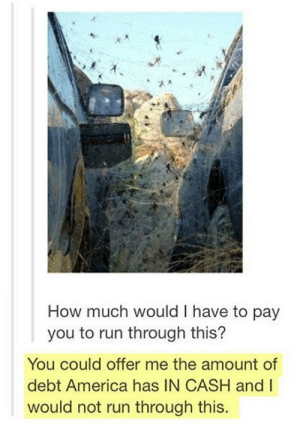 America, Omg, and Run: How much would I have to pay  you to run through this?  You could offer me the amount of  debt America has IN CASH andI  would not run through this. Not for shitomg-humor.tumblr.com