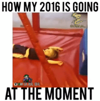 😂😂😂 2016 so far... 2016 progress funniest15seconds Created by @am_da_real_deal Email: funniest15seconds@yahoo.com Youtube: funniest15seconds Website: www.viralcypher.com: HOW MY 2016 IS GOING  COTHIAMA  AM DA REAL DEAL  THE MOMEN 😂😂😂 2016 so far... 2016 progress funniest15seconds Created by @am_da_real_deal Email: funniest15seconds@yahoo.com Youtube: funniest15seconds Website: www.viralcypher.com