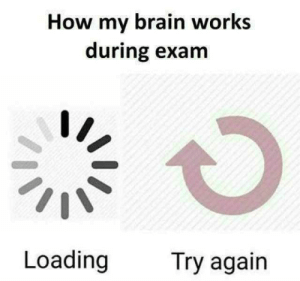 Memes, Best, and Brain: How my brain works  during exam  Loading  Try again The best loading memes :) Memedroid