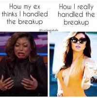 Ex's, Memes, and Idiot: How my ex  How really  thinks I handled  handled the  the breakup  breakup  circloof idiots 💯