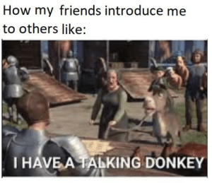 Mostly in group projects: How my friends introduce me  to others like:  I HAVE A TALKING DONKEY Mostly in group projects