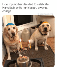 Bless Up, College, and Love: How my mother decided to celebrate  Hanukkah while her kids are away at  college  @DrSmashlove SWIPE FOR MORE - LATE NIGHT LOVE BOMB FOR MY INSOMNIACS WHO HATE WORK SO MUCH THAT THEY CANT SHLEEP I AM WITH YALL IN SPIRIT BELOVEDS TURN YA PHONE OFF (after u smash that like 😊😂) AND GO TO YA HAPPY PLACE AND RELAX - BREATHE - AIGHT? U GOT THIS BLESS UP 😍😂😂 (Slide 1 pic: reddit u- ChaseDace2000 Slide 2 pic: reddit u-Sarssy Slide 3 vid: @wat.ki)