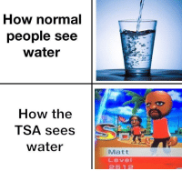 Scary shit: How normal  people see  water  How the  TSA sees  water  Matt  Level  2512 Scary shit